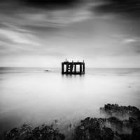 Cage by Chaerul-Umam