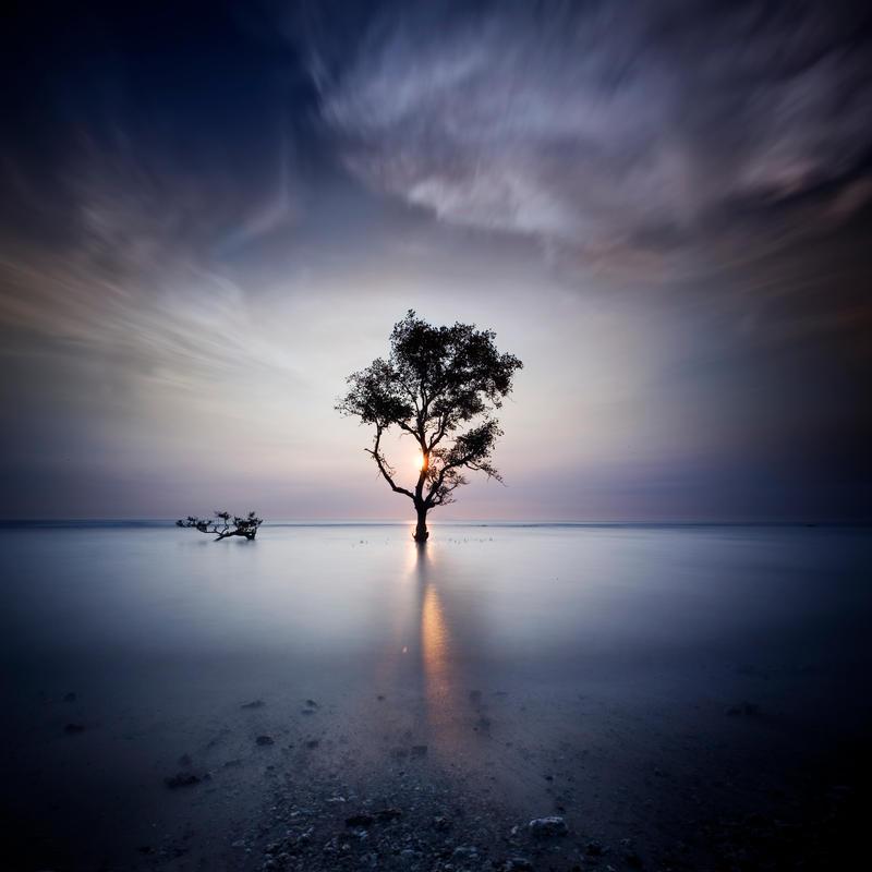 The Light for Mom by Chaerul-Umam