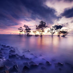 Laguna III by Chaerul-Umam