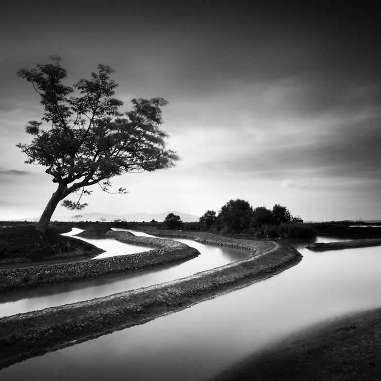 Pamarican by Chaerul-Umam