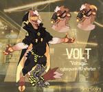 V is for Voltage
