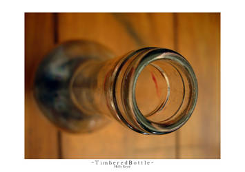 Timbered Bottle by h-o-l-z