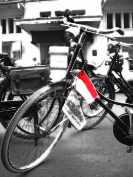 Indonesian Bike