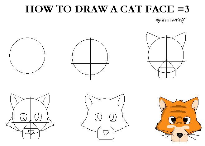 How to draw a dog face
