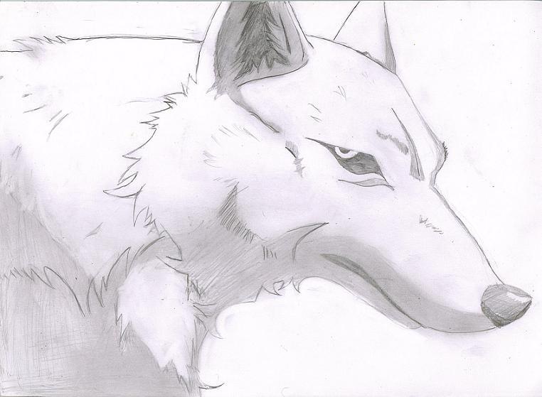 Lone Wolf by Silvas