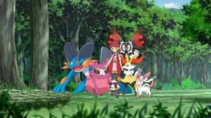 Pokemon Serena team remake