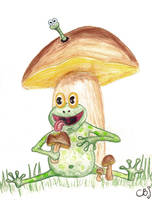 Frog and Boletos by chbj