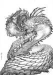 African Dragon v2