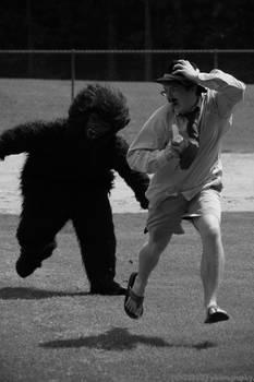 him and his gorilla vii.