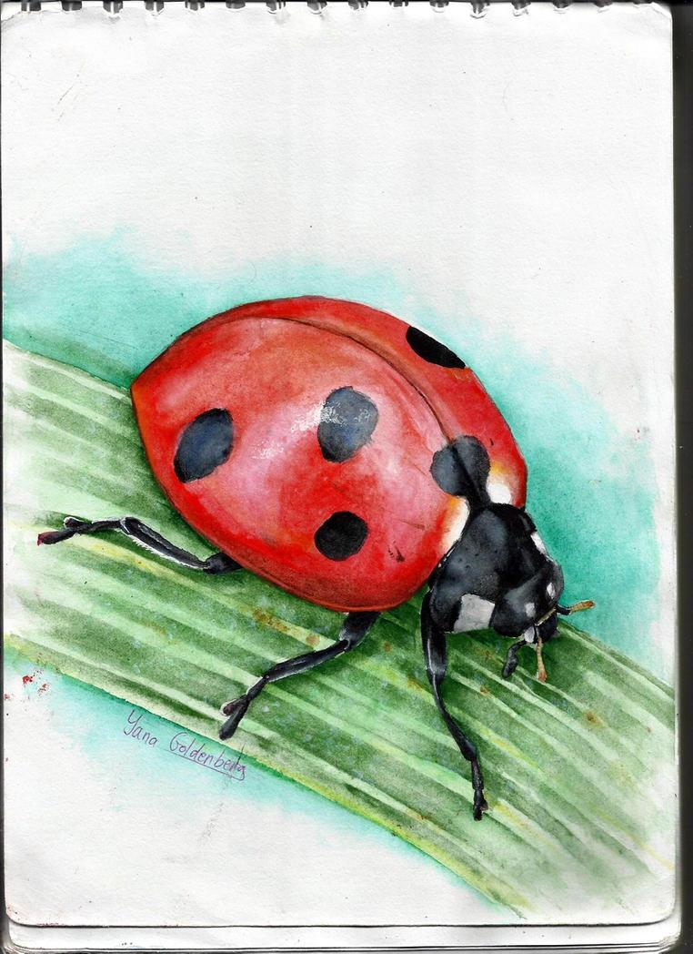Watercolor studying- ladybug by ItsMyUsername