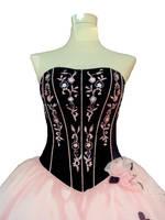 Dress stock by Saikochan-Stock