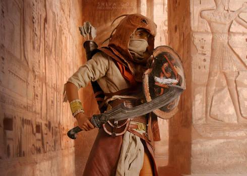Bayek cosplay Desert Cobra outfit