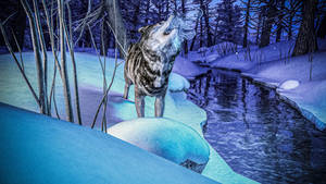 Howling at the winter's moon