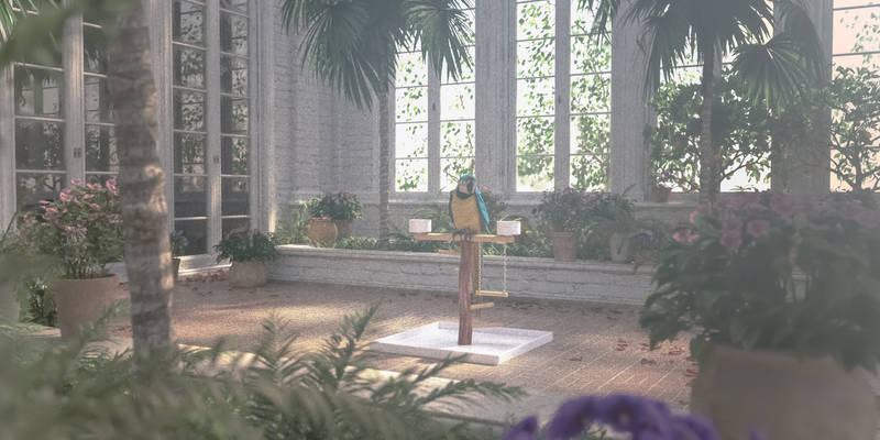 The Parrot's Garden