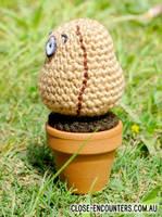 Amigurumi Wall-Nut by Close-Encounters