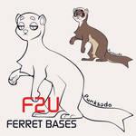 New F2U ferret base