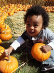 THE PUNKIN JOURNEY  by GodBeautiful