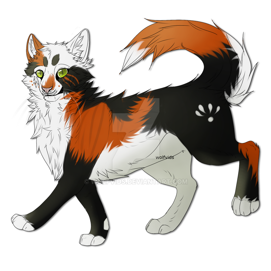 PhantomKisses The Warrior Cat By Wolfvids On DeviantArt
