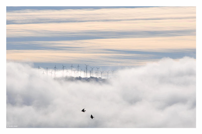 Island in the clouds by WhiteShoresCalling