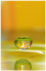 drop of bravo by ladyrapid