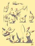 Pikachu Motion Study