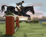 Tuxedo : Lugnas Int. - Show Jumping