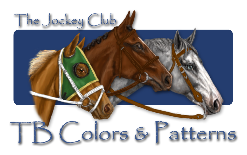 Jockeyclub Colors By MistyofSunrise