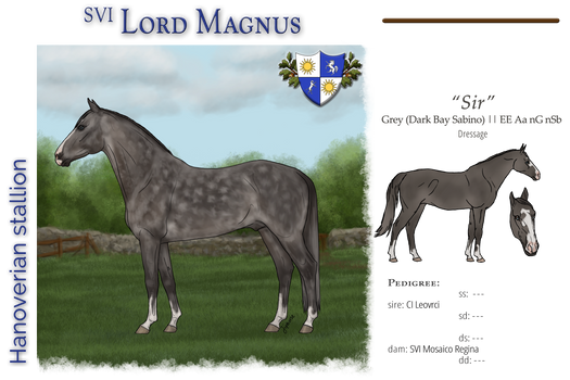 SVI Lord Magnus - SOLD