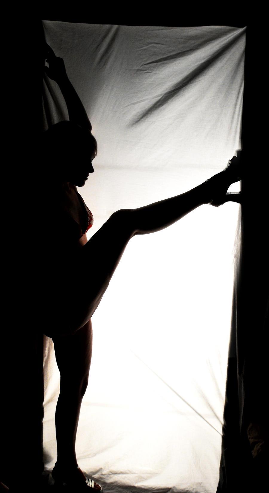 Silhouette by LadyRavenhawk