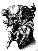 predator by liteboxxx