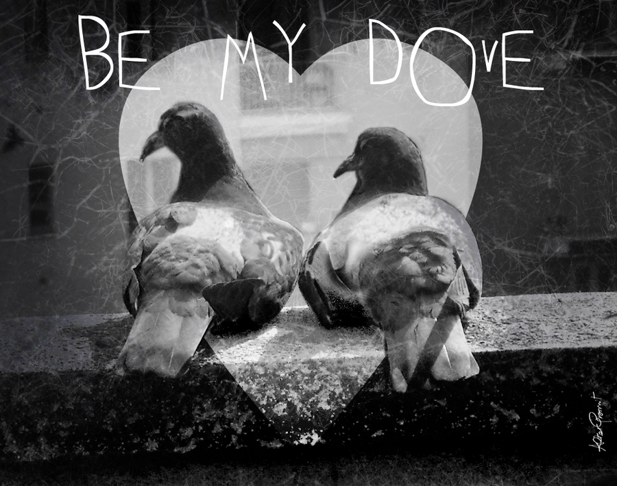 Be my Dove by altergromit
