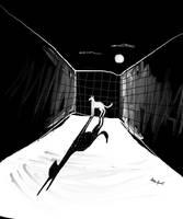 Dog at night by altergromit
