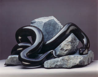 Black Snake by wnutt