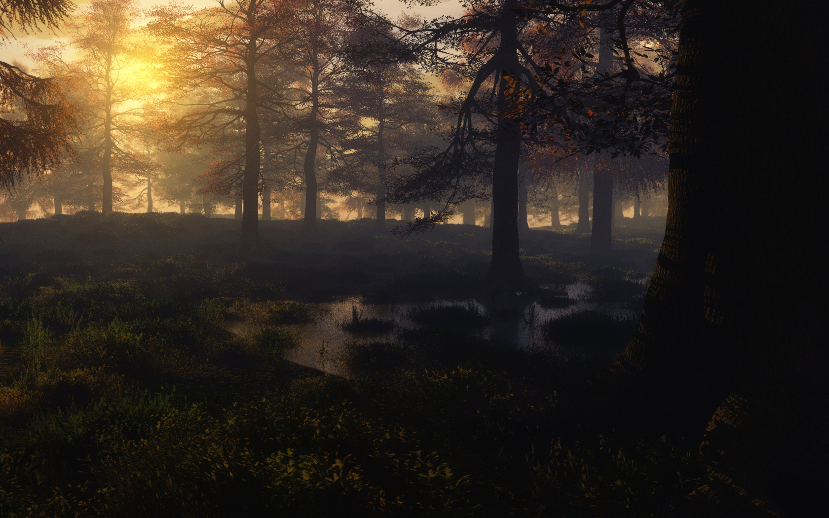 Autumn Mist by mayaslash