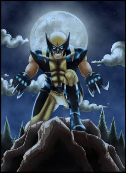 Wolverine at night