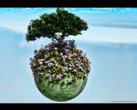 One tree planet