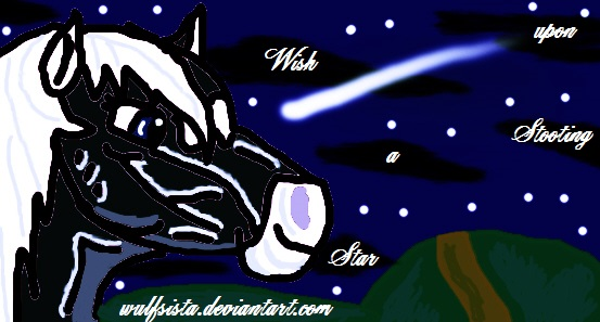 Wish upon a Shooting Star-Signature by Wulfsista
