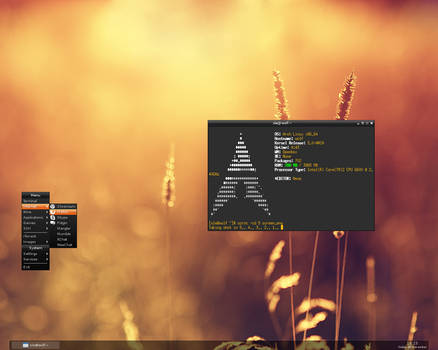 Arch Linux 2011-11-25