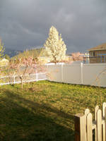Springtime in Utah by Midorii-kiri