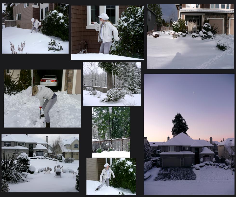 Backyard Winter by Tanize