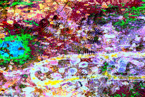 Woodland Stream by nosuchthingasnothing