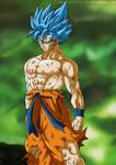 Goku Super Saiyan Blue - Universe Survival
