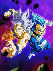 Goku And Vegeta - Universe Survival by SenniN-GL-54