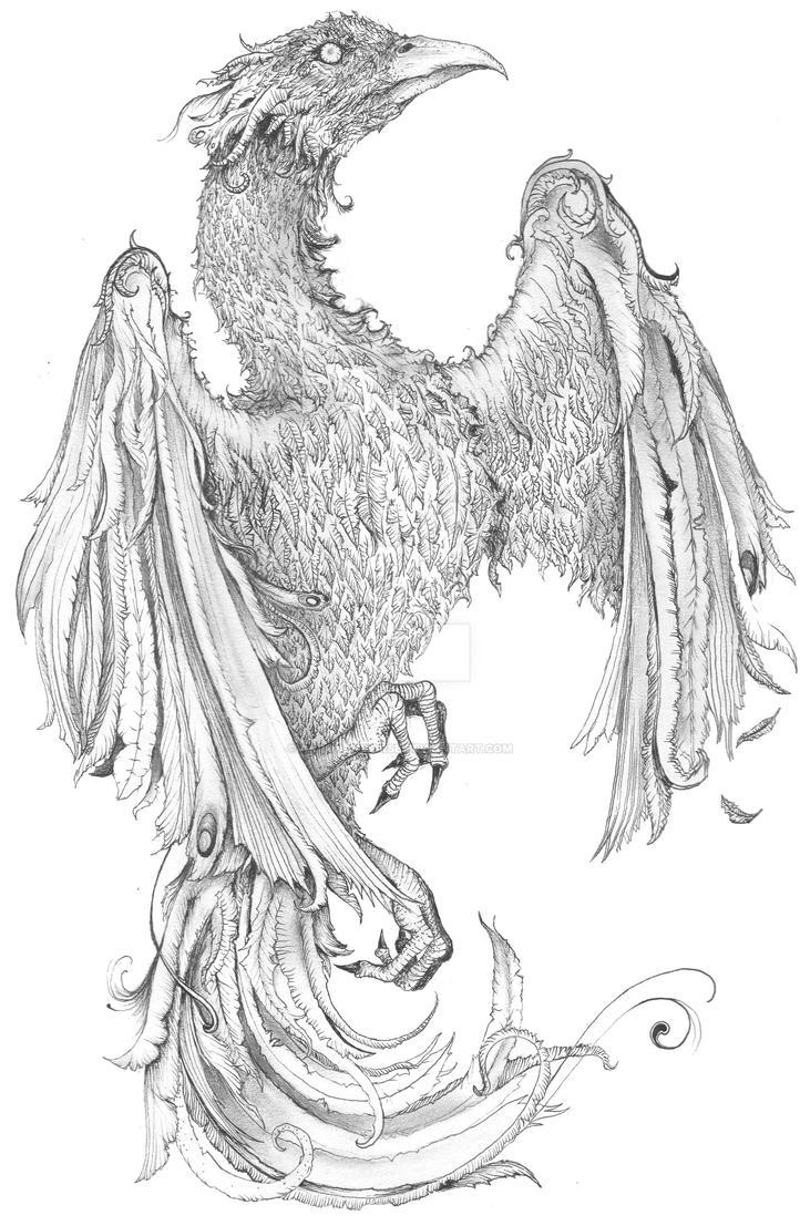 Phoenix by Aaron-R-Morse