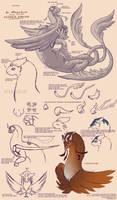 Khle'ahd Species Sheet