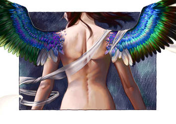 Wings by Wolka-Art