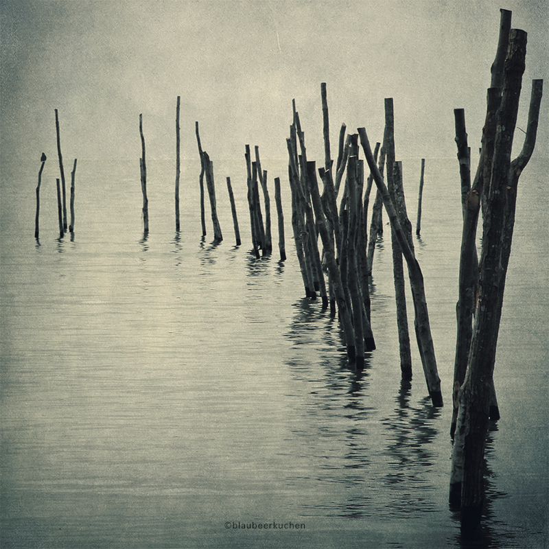 nightfall (what a strange word) by bluePartout