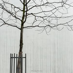 Hoffnungstraeger by bluePartout