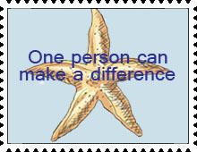 Starfish Story Stamp by katamariluv
