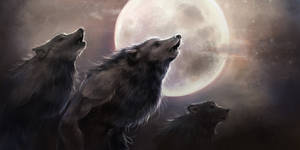 Mooncallers